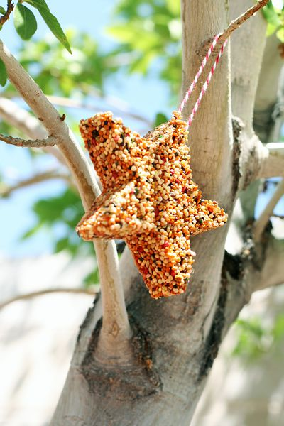 "<p>Star Bird Feeders</p> <p>Make these cute little bird feeders a day ahead - or get your guests to put them together at the party.</p> <p>Environmentally-friendly and oh so unique. <a href=""http://eighteen25.com/2011/08/bird-feeders/"" target=""_blank"" draggable=""false"">Here's how ...</a></p>"