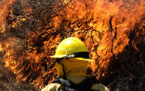 Thousands evacuated as firefighters battle growing California wild fire