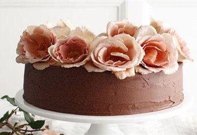 Crowd-pleaser chocolate cake