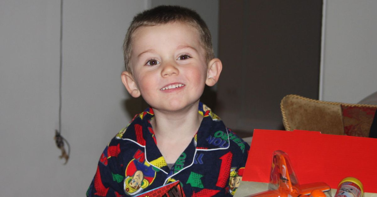 William Tyrrell's sister vows to become a detective and find her brother – 9News