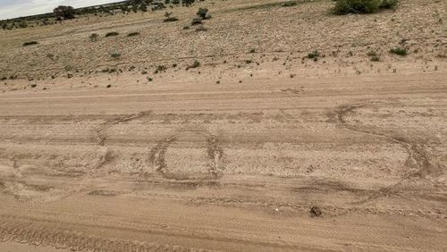 They scrawled SOS in the red earth.