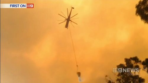Firefighters in action. (9NEWS)