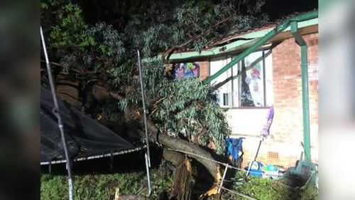Heavy rainfall caused a tree to crash through the roof of a home in Doonside.