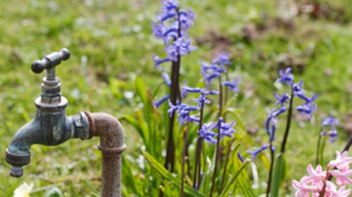 Thief shuts off water and steals garden taps from 29 homes