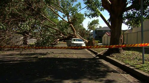 A total of 7700 properties are still without power.