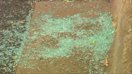 The alleged rock-throwing occurred at about 8.45pm yesterday.