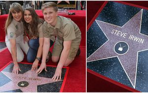 Steve Irwin honoured on Hollywood Walk of Fame
