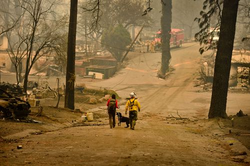 Butte County Search and Rescue worker Noelle Francis and search dog Spinner look through the ashes for survivors and remains at Skyway Villa Mobile Home and RV Park in Paradise