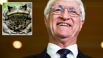 Bob Katter with a cane toad
