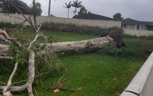 City recovering after 'abnormal' storm slams Newcastle