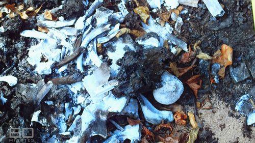 The burnt bones of murder victim Deborah Applegate. (60 Minutes)