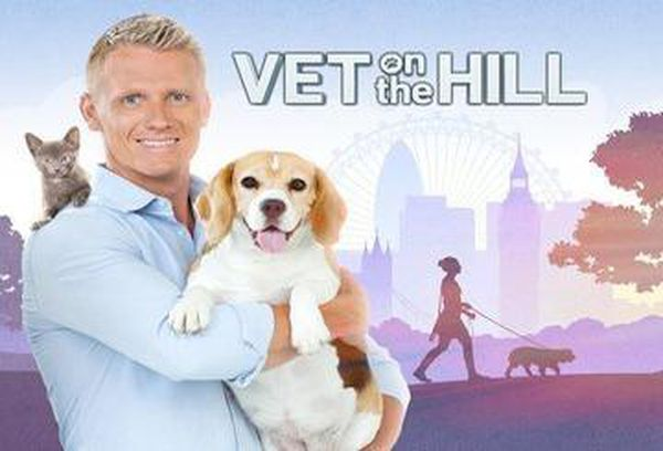 Vet on the Hill