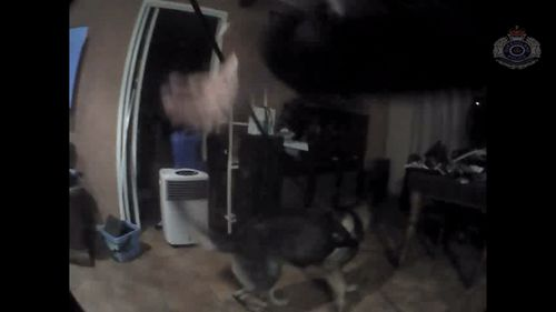 Officers and a police dog stormed the house and found the man and woman hiding inside.
