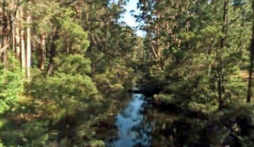 The 15-year-old was last seen in the area of One Tree Bridge on the Donnelly River.
