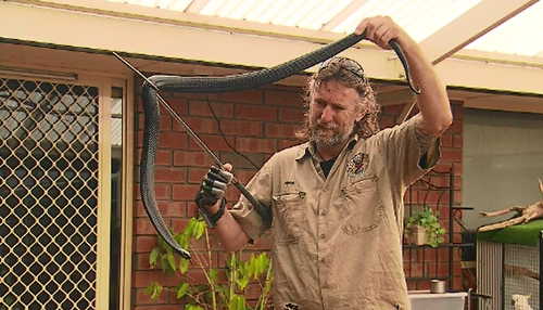 If you come across a snake in your home, Mr Hempel said you should contact the experts to remove it.