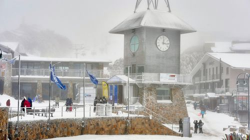 Police found Conrad Whitlock's BMW near Mount Buller Ski Resort in the Victorian Alps.