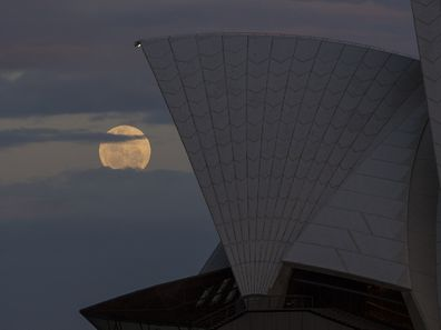 The Supermoon rises behind the Opera House on November 14, 2016 in Sydney, Australia.