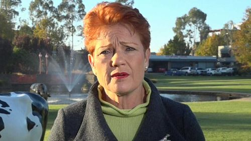 Pauline Hanson on Today.