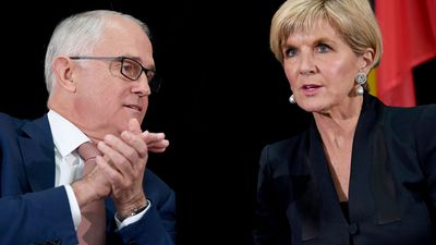 Cabinet leaking a criminal offence: Bishop