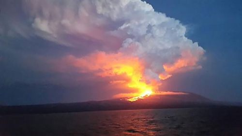 The erupting Wolf Volcano, viewed at a distance. (Galapagos National Park)