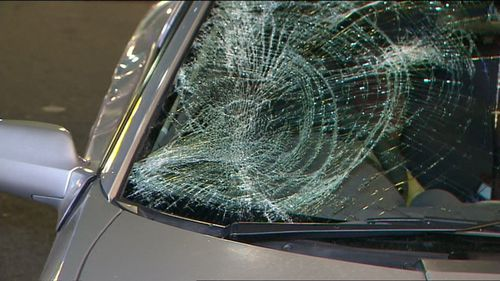 The vehicle's windscreen was shattered from the impact. Photo: Supplied