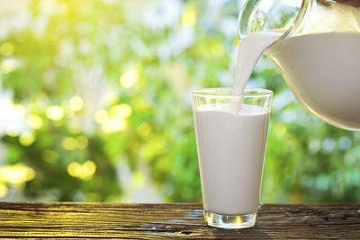 <strong>Low-fat milk (32)</strong>