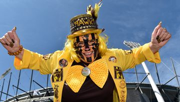 Hawks fan Theresa Dobbie wore a hat to block the sun at the MCG.  (AAP)