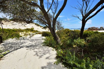 <strong>Squeaky Beach, Wilsons Promontory National Park, Victoria</strong>