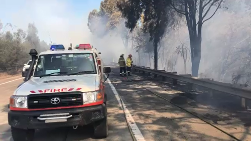 Fire crews are currently tackling a bushfire along the M1 Motorway in Cooranbong, in the NSW Lake Macquarie region.