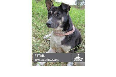 Fatima is adorable.