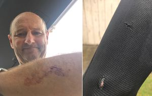 Father-of-three punches shark in eye during terrifying surfing encounter
