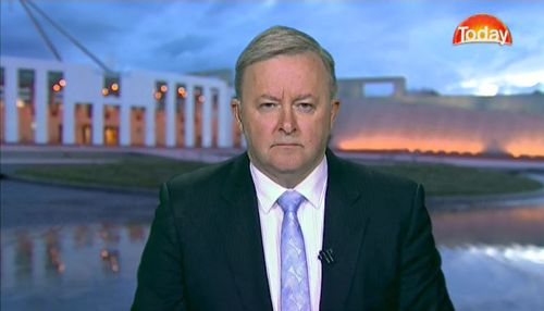 Ms Husar's Labor colleague Anthony Albanese defended her on the Today Show, despite the allegations. Picture: 9NEWS.