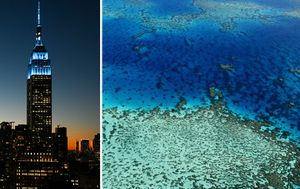Aussie scientists find coral reef bigger than Empire State Building