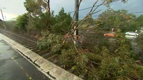 Victorians are facing a massive cleanup effort today after wild winds and intense storms caused destruction across the state. Picture: 9NEWS.