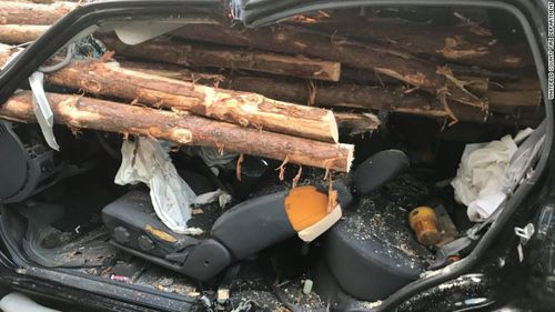 Driver survives after logs smash through his car windscreen