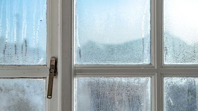 Windows of a house with condensation in winter