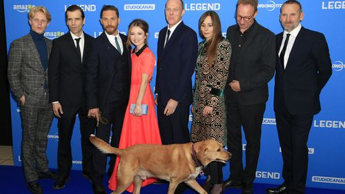 Tom Hardy's pet dog steals the show at London premiere