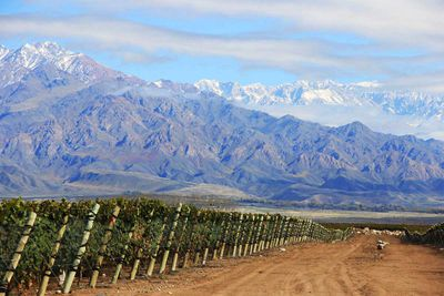 1. Zuccardi Valle de Uco, Argentina *Best in South America*