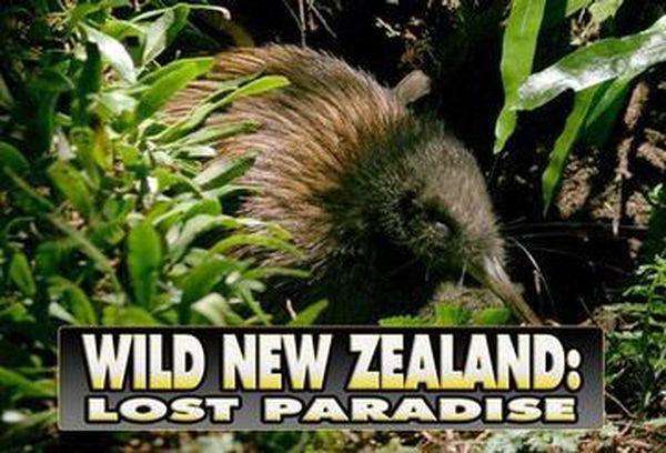 Wild New Zealand: Lost Paradise