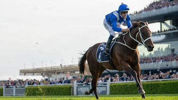 Winx to be honoured at Randwick