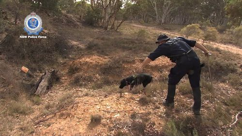 Specialist police dogs were used as part of the search.