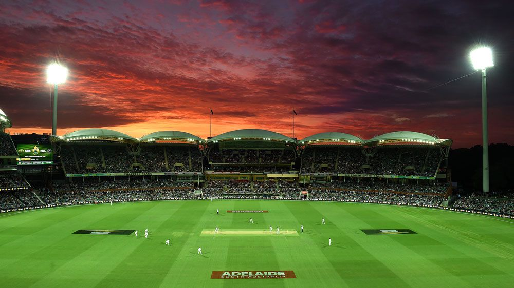 Adelaide Oval on the first day of Test cricket's first day-night match. (AAP)