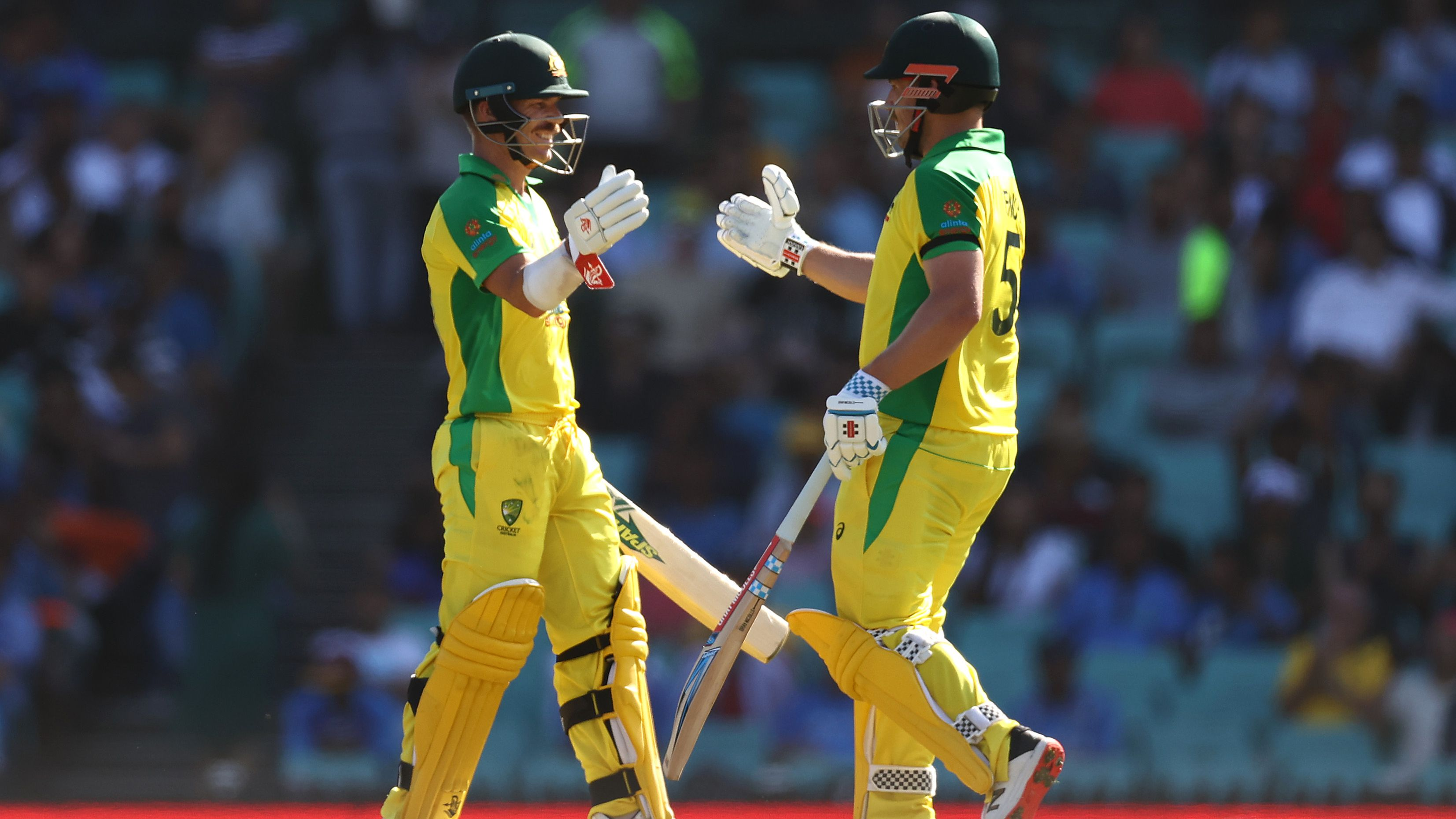 David Warner and Aaron Finch celebrate after reaching their 150 run partnership.