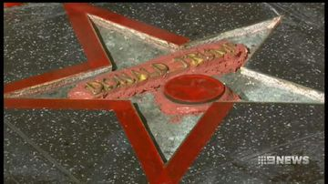VIDEO: Trump's Walk of Fame star under repair after being destroyed by axe-wielding vandal