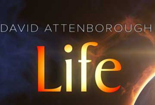 David Attenborough's Life