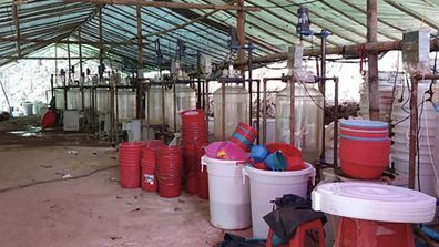 Meth labs in the Myanmar jungle provide much of Australia's methamphetamine.