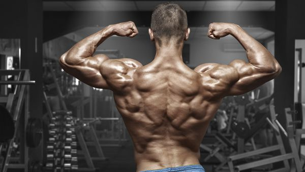 how to get back abs 9coach