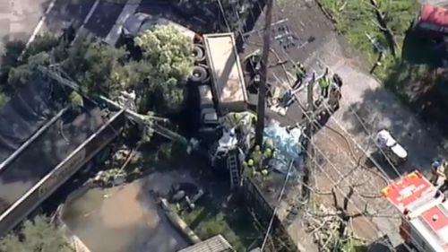 The crash felled powerlines. (9NEWS)