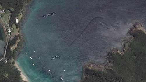 Satellite image of 'sea troll' haunting New Zealand bay debunked by science