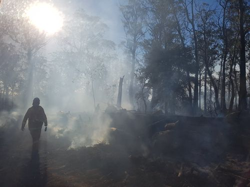 Hundreds of thousands of hectares of bushland have been destroyed as fire burns across the state of Tasmania.